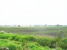 Bonito terreno a pie de carretera