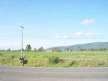 Terrenos escriturados a pie de carretera.
