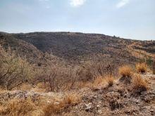 Venta de terreno de 16 hectareas en lomas de medina