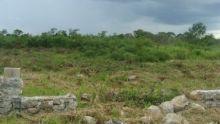 Col. Santa maria, Merida, Yucatan, Mexico