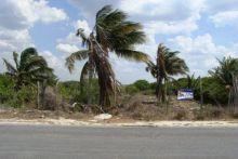 Chuburna puerto, Progreso, Yucatan, Mexico.