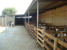 Rancho en atoyac